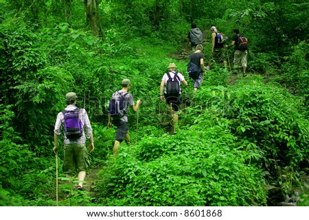 Group of trekkers hike through lush green jungle