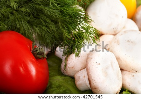 Group of  vegetables and mushroom with dill. Isolated.