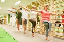 Group of vital seniors doing Motorik Balance exercise on one leg as a fall prevention