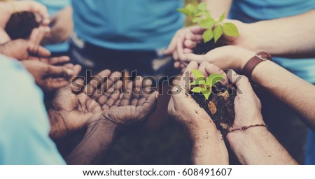 Group of volunteer with sprout for growing #608491607