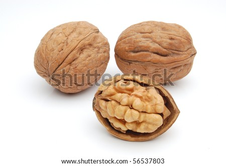 Group of walnuts on white background
