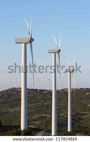group of  windmills in a wooded area