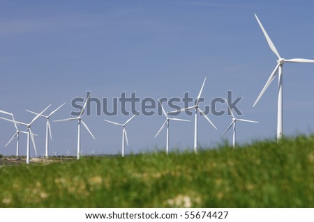 group of windmills looming in a green meadow grass