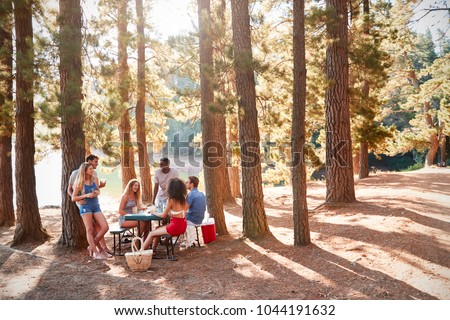 Group of young adult friends hanging out by a lake