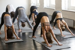 Group of young sporty attractive people practicing yoga lesson with instructor, stretching in Downward facing dog exercise, adho mukha svanasana pose, friends working out in club, full length, studio