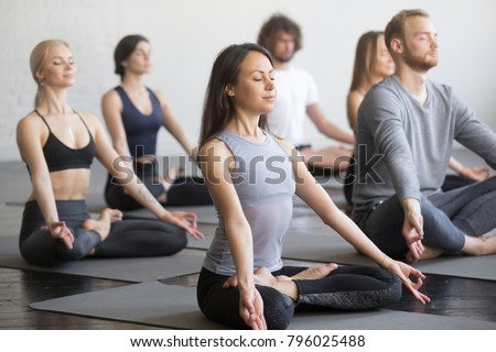 Group of young sporty people practicing yoga lesson with instructor, sitting in Padmasana exercise, Lotus pose, working out, indoor full length, students training in club, studio