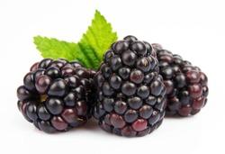 Group ripe blackberry on white background