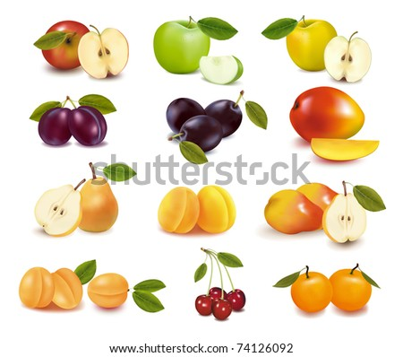 Group with different sorts of fruit.