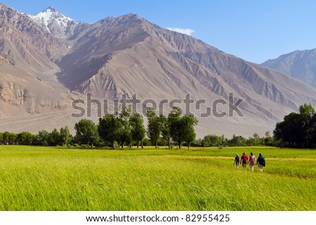 Groupe of tourists in the field of Pamirs. View of afghan mountains