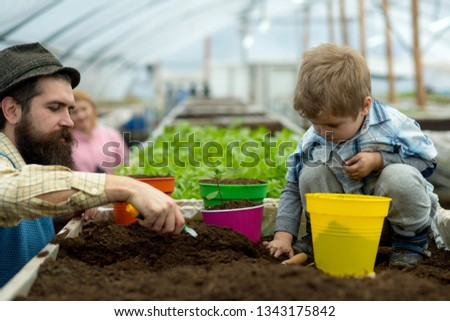 grow green plant. father and son grow green plant. happy family grow green plant in greenhouse. grow green plant in modern oragery. we are doing everything together #1343175842