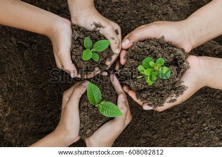 Growing concept eco Group hand  children planting together on soil background