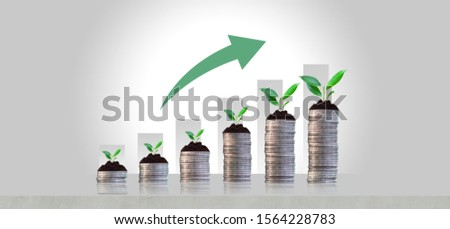 Growing crops in saving coins - investment concepts and interests Business growth