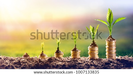 Growing Money - Plant On Coins - Finance And Investment Concept Foto stock ©