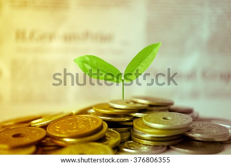 Growing plant on row of coin money for finance and banking concept #376806355
