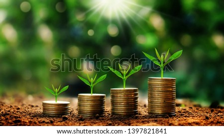 Growing plants on coins stacked on green blurred backgrounds and natural light with financial ideas. #1397821841