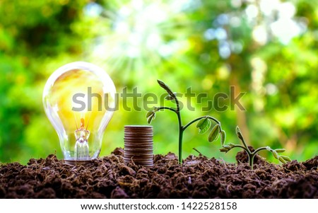 Growing trees and bulbs on the ground, energy and environmental concepts