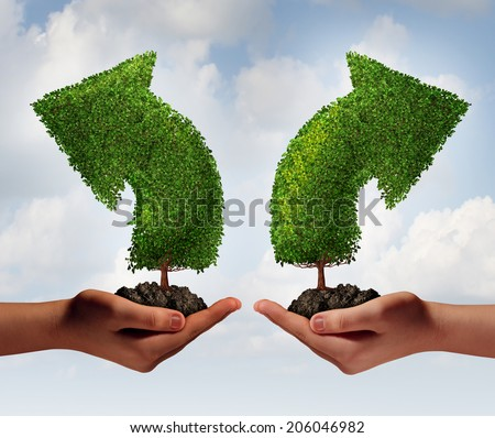Growth choice and business guidance concept as two human hands holding up trees shaped as an arrow growing in opposite directions as a crossroad metaphor for choosing the right option for success.