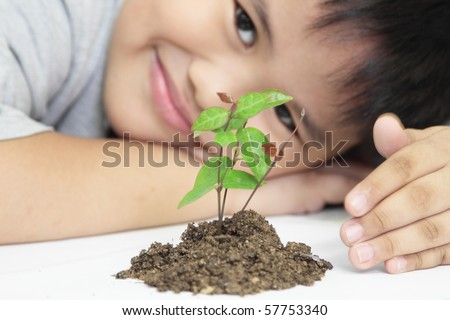 growth concept with small plant and hand