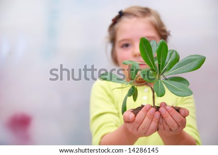 growth concept with small plant in hand