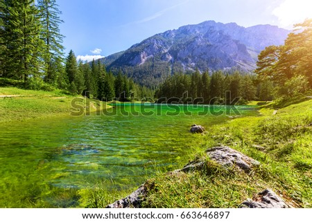 Gruner See - Beautiful green lake with crystal clear water #663646897