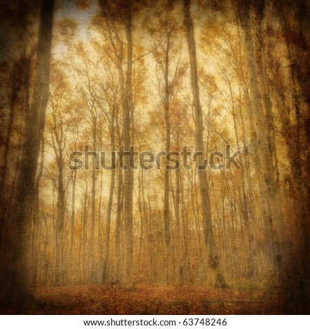 Grunge autumn beech forest. Artistic vintage background