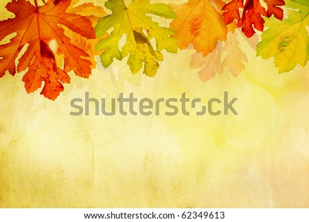 Grunge background with autumn leaves and copy space
