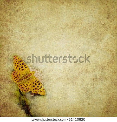 grunge background with butterfly and a place for text or image