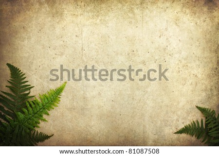 grunge background with fern leaves