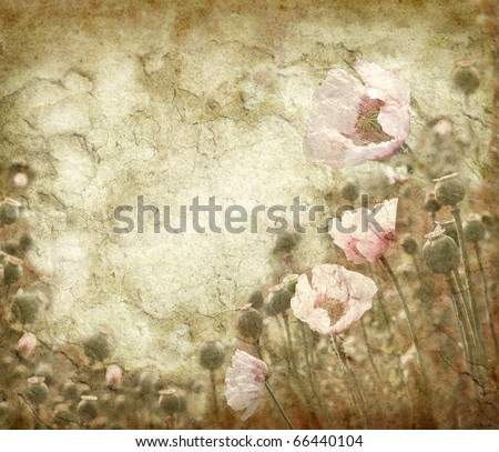 Grunge background with poppies in vintage style