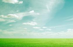 grunge beauty blue sky and green grass