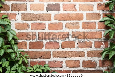Grunge brick wall with natural floral frame