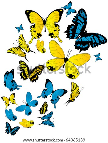 butterflies drawings