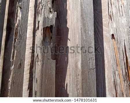 Grunge old weathered wood surface, weathered wood #1478101631