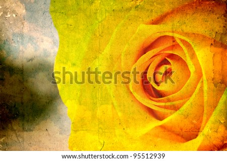 Grunge paper with yellow rose flower