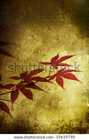 Grunge red leaf isolated on a texture