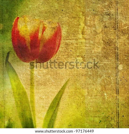 Grunge retro background with tulip and copy space