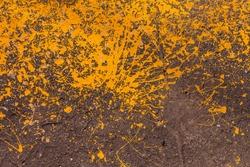 Grunge street urban texture with bright orange paint splatters