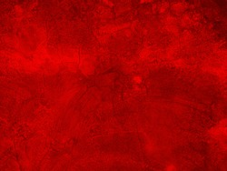Grunge texture background of wall in a red tone