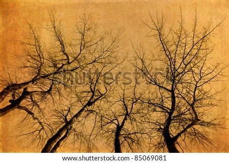 grunge textured picture of four skeletal trees