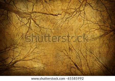 Grunge tree branches upon sky textured background