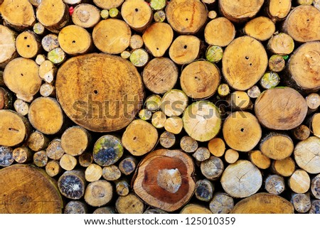 grunge wall made by wood logs