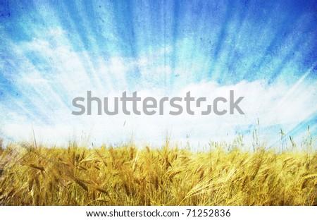 grunge wheat