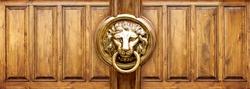 grunge wood panels used as background , Lion Head Door Knocker