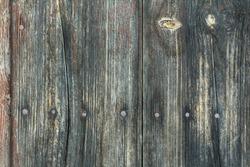 GRUNGE WOOD - WOOD TEXTURE - 5