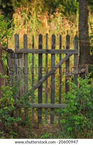 grunge wooden door.  vintage gate - entrance of garden