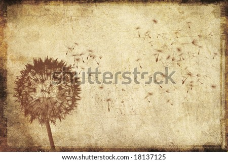 dandelion tattoos. dandelion tattoo on foot,
