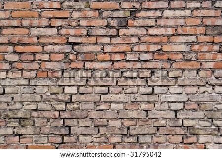 grungy brick wall semi wide