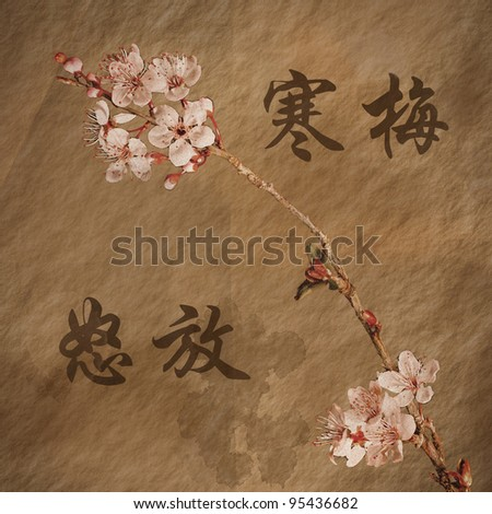 Grungy Cherry Blossoms -'The cherry Blossoms are Blooming""