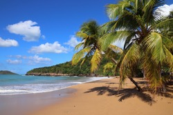 Guadeloupe sandy beach. Caribbean vacation landscape. Perle Beach (Plage de la Perle).