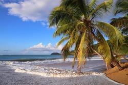 Guadeloupe sandy beach. Caribbean vacation landscape. Perle Beach (Plage de la Perle). Basse-Terre island.